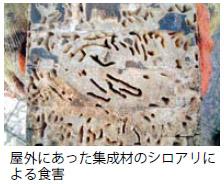 Syokugai_4
