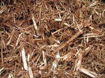 Biomass3